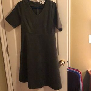 Size 12 petite cold water creek dress NEW